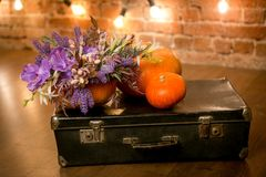 Bright autumn bouquet in a pumpkin on dark background royalty free stock photography