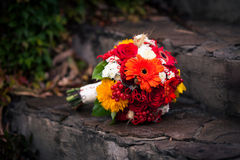 Bright autumn bunch of flowers on the stone stairs Stock Image