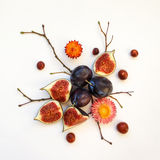 Bright autumn composition of plums, figs, dry flowers and branches on white background. Flat lay, top view Stock Photos