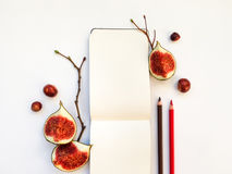 Bright autumn composition of a sketchbook, figs and tree branches. Flat lay, top view Royalty Free Stock Image