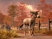 Donkey in Autumn stock illustration