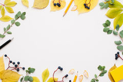 Bright autumn frame on white background Royalty Free Stock Image