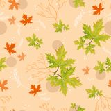 Bright autumn green leaves Royalty Free Stock Images