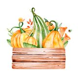 Bright autumn illustration with fall leaves,branches,berries,mushrooms Stock Photo