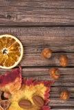 Bright autumn leaf Stock Images
