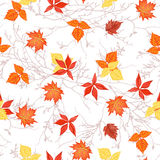 Bright autumn leaves on branches seamless vector print Royalty Free Stock Photography