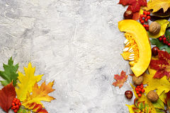 Bright autumn leaves on a grey concrete background. Bright autumn leaves on a grey concrete background with space for text Royalty Free Stock Photography