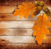 Bright autumn leaves on the old wooden background Royalty Free Stock Photos
