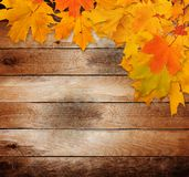 Bright autumn leaves on the old wooden background Stock Photo