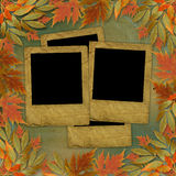 Bright autumn leaves with paper frame Stock Photos