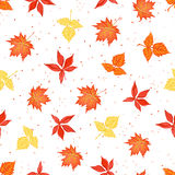 Bright autumn leaves on speckled backdrop seamless vector print Royalty Free Stock Images