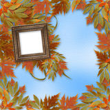 Bright autumn leaves with wooden frame Stock Photos