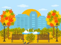 Bright autumn park in the city with a lake with swans. Panorama of the city in October with maple trees, leaves and pigeons in the. Park. flat vector vector illustration