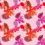Bright autumn pattern. For decor Stock Image