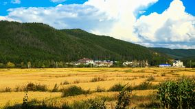 A bright autumn scenery seen in Mudanfeng National forest park attractive spot 2. Taken in September 18, 2015 shows a pleasant view of havest season in autumn Royalty Free Stock Photo