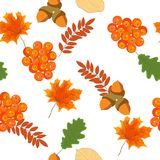 Bright autumn seamless pattern with leaves and berries of mounta. In ash, maple , oak Stock Photo