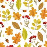 Bright autumn seamless pattern. Leaves and red berries isolated. Digital illustration. Bright autumn seamless pattern. Leaves and red berries isolated on white royalty free illustration