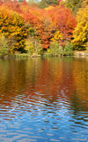 Bright autumn trees. With their reflection in water stock photography