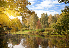 Bright autumn wood is reflected in the lake Royalty Free Stock Images