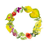 Bright autumn wreath. Flowers, yellow leaves. Floral watercolor border Stock Photography