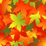 Bright autumnal leaf background. Vector illustration, AI file included Royalty Free Stock Photo