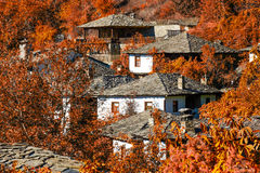 Bright autumnal scenery with old houses. Autumnal scenery with old traditional houses in Leshten, Bulgaria Royalty Free Stock Images