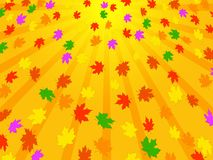 Bright Background of autumn leaves Stock Photos