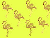 On a bright background, pink flamingos. Wallpaper for wallpapers, web pages, banners.. A couple of pink flamingos. A couple of pink flamingos royalty free illustration