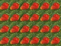 Bright background of strawberries. royalty free stock photos