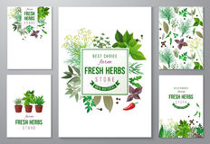 Bright backgrounds with fresh herbs. 5 bright backgrounds with fresh herbs and store emblems Royalty Free Stock Photo