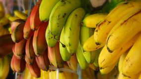 Bright bananas Stock Image