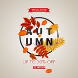 Bright banner for autumn sale Stock Images