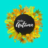 Bright banner for autumn sale Stock Photos