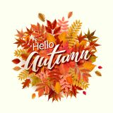 Bright banner for autumn sale Stock Photo