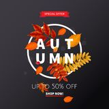 Bright banner for autumn sale Stock Photography