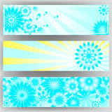 Bright banner set with flowers. Stock Photos