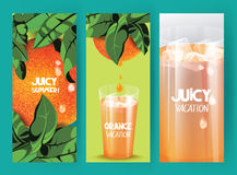 Bright banners with oranges on the tree with green leaves and glass of orange juice Stock Photos