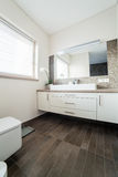 Bright bathroom with sink and wc Stock Image