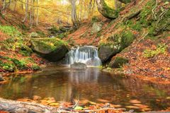 A bright beautiful autumn in the forest. A river with a waterfall, trees with bright leaves. Stock Photos