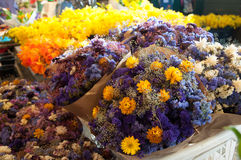 Bright Flowers with Beautiful Color at a Market. Stock Photos