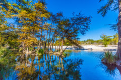 Bright Beautiful Fall Foliage on the Crystal Clear Frio River. Royalty Free Stock Image