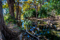 Bright Beautiful Fall Foliage on the Crystal Clear Frio River. Bright Beautiful Green, Yellow, and Orange Fall Foliage on the Crystal Clear Frio River in Rural Stock Photography
