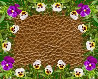 Bright beautiful flowers on a leather surface, background,,of co Royalty Free Stock Photos