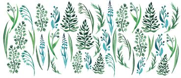 Bright beautiful graphic herbal floral pattern of green grass with oat horizontal pattern watercolor. Hand illustration Stock Photography