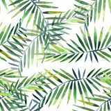 Bright beautiful green herbal tropical wonderful hawaii floral summer pattern of a tropic palm and monstera leaves watercolor hand. Illustration. Perfect for stock illustration