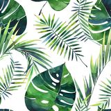 Bright beautiful green herbal tropical wonderful hawaii floral summer pattern of a tropic palms watercolor hand illustration. Perfect for textile, wallpapers vector illustration