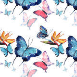 Bright beautiful sophisticated wonderful tender gentle spring tropical colorful butterflies with tropical yellow flowers pattern. Watercolor hand sketch Royalty Free Stock Image