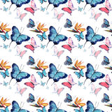 Bright beautiful sophisticated wonderful tender gentle spring tropical colorful butterflies with tropical yellow flowers pattern. Watercolor hand sketch Royalty Free Stock Photography