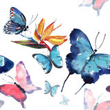 Bright beautiful sophisticated wonderful tender gentle spring tropical colorful butterflies with tropical yellow flowers pattern. Watercolor hand sketch Stock Image