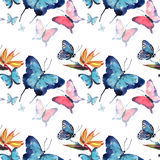 Bright beautiful sophisticated wonderful tender gentle spring tropical colorful butterflies with tropical yellow flowers pattern w. Atercolor hand sketch Royalty Free Stock Images